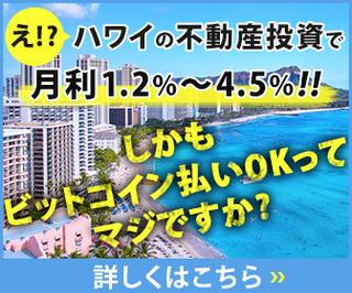 ハワイ不動産投資.jpg